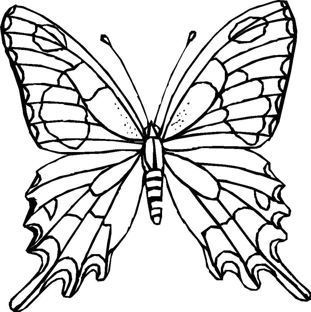 Раскраска Бабочка с волшебными крыльями. Скачать Бабочка.  Распечатать ,бабочки,