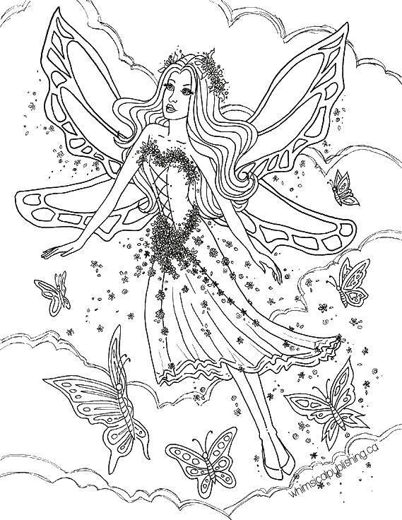 Раскраска Барби стала феей Скачать ,Фея, лес, сказка,.  Распечатать