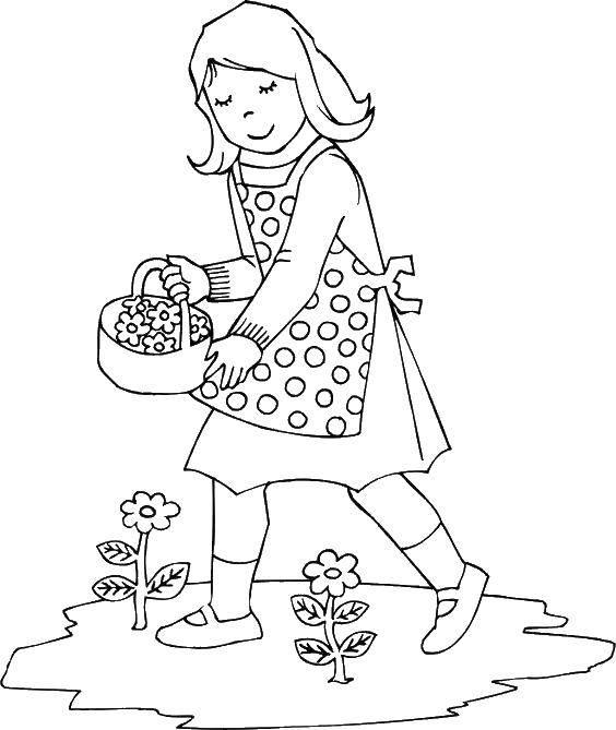 Раскраска Девочка собирает цветы. Скачать цветы, девочка.  Распечатать ,цветы,