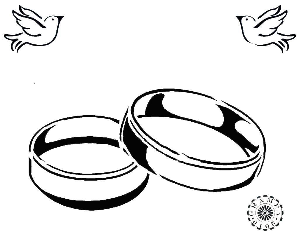 Раскраска Два кольца Скачать кольца, колечки, брак.  Распечатать ,кольцо,