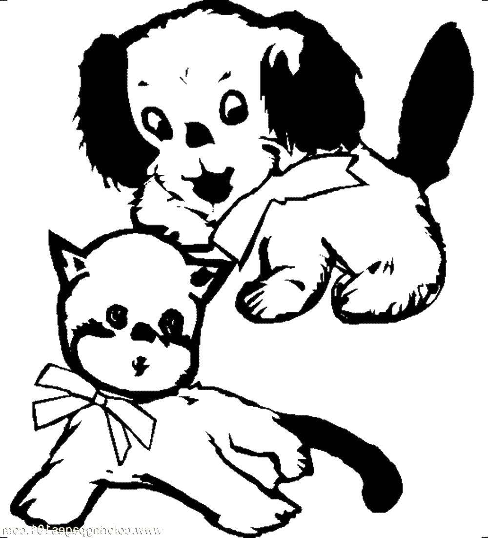 Раскраска Котенок и щенок в бантике. Скачать котенок, щенок, бантик.  Распечатать ,котята и щенки,