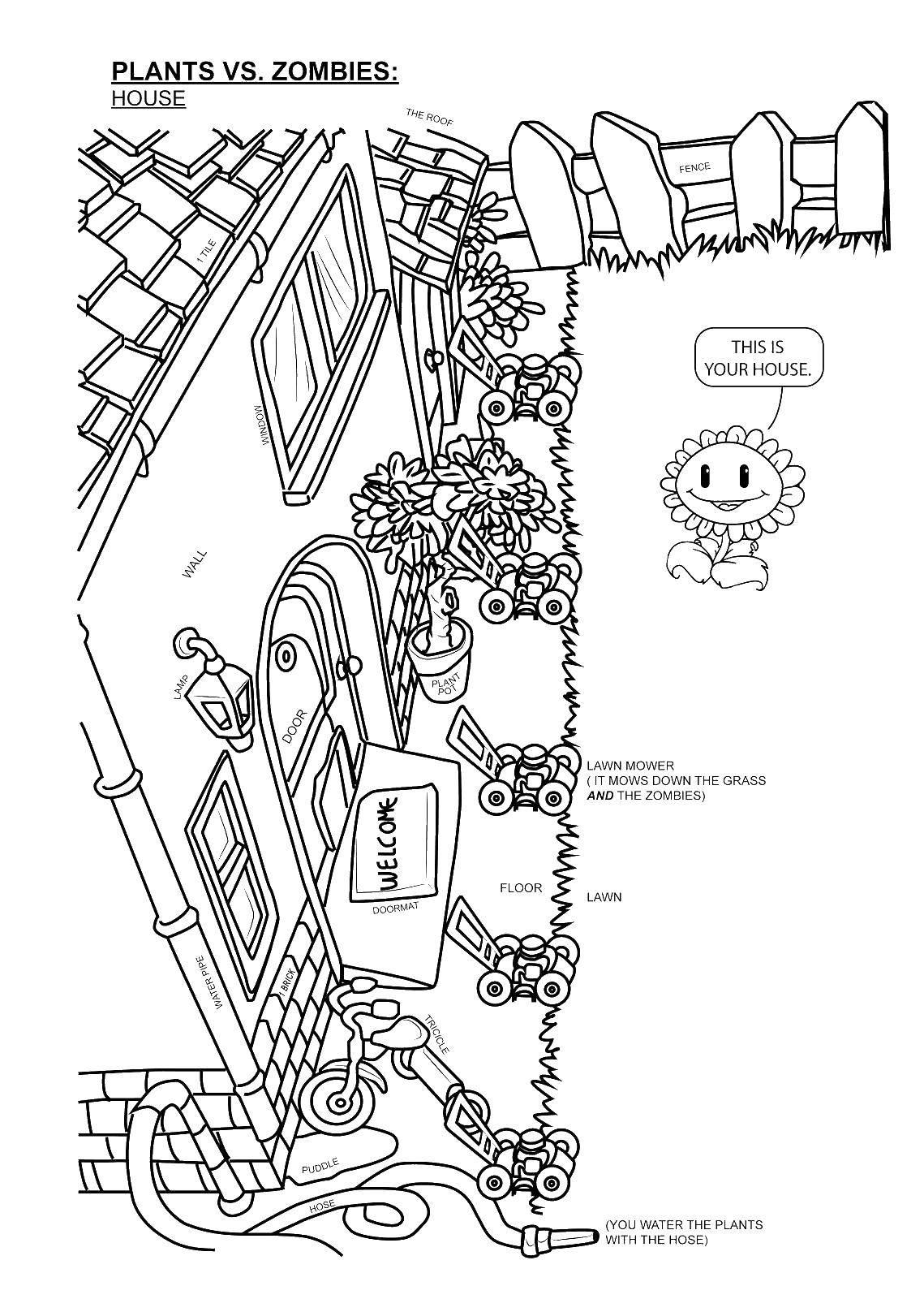 Раскраска Крыльцо дома и растение. Скачать дом, крыльцо, растение, забор.  Распечатать ,раскраски,