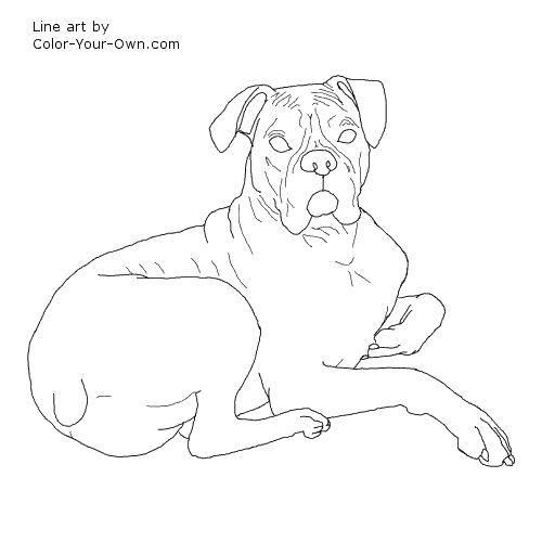 Раскраска Лежачий пес. Скачать Животные, собака.  Распечатать ,собаки,