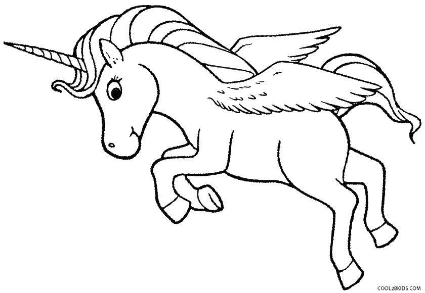 Раскраска Маленький единорог и крылья Скачать конь, крылья.  Распечатать ,раскраски,