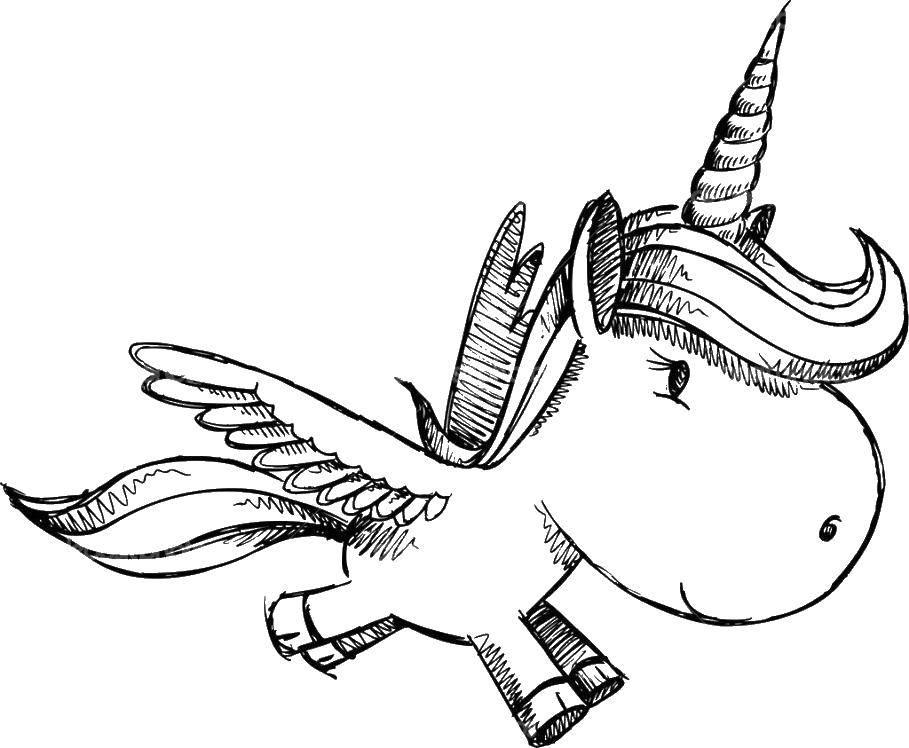 Раскраска Маленький единорог с крыльями Скачать ,единорог, крылья, хвост,.  Распечатать