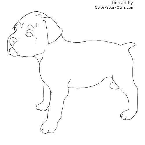 Раскраска Маленький щенок. Скачать Животные, собака.  Распечатать ,Животные,