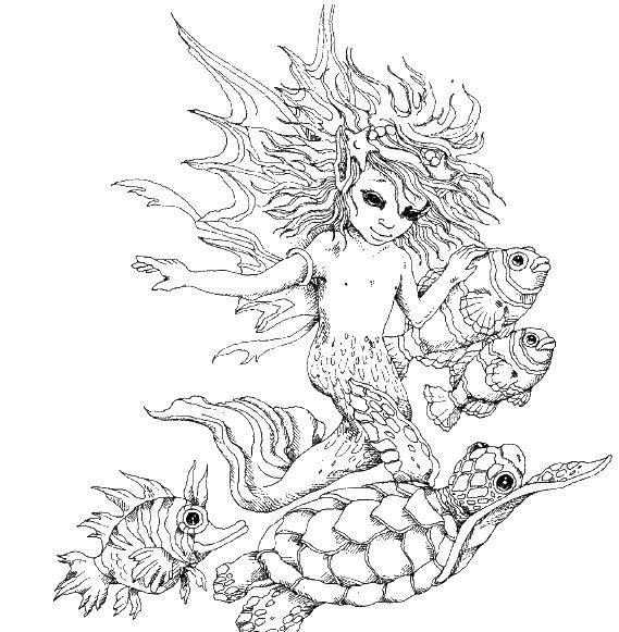Раскраска Малыш русалка Скачать Русалка.  Распечатать ,Фэнтези,