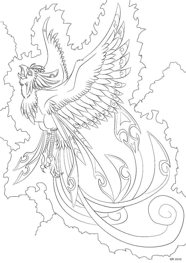 Раскраска Огненная птица. Скачать птицы, огонь, сказки.  Распечатать ,птицы,