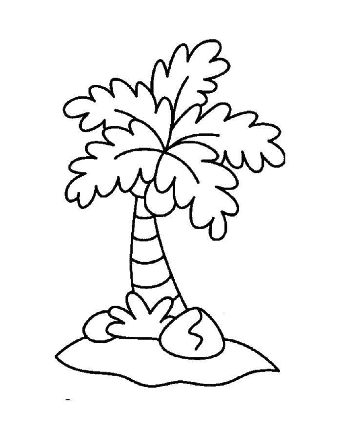 Раскраска Смешная пальма. Скачать Остров.  Распечатать ,остров,