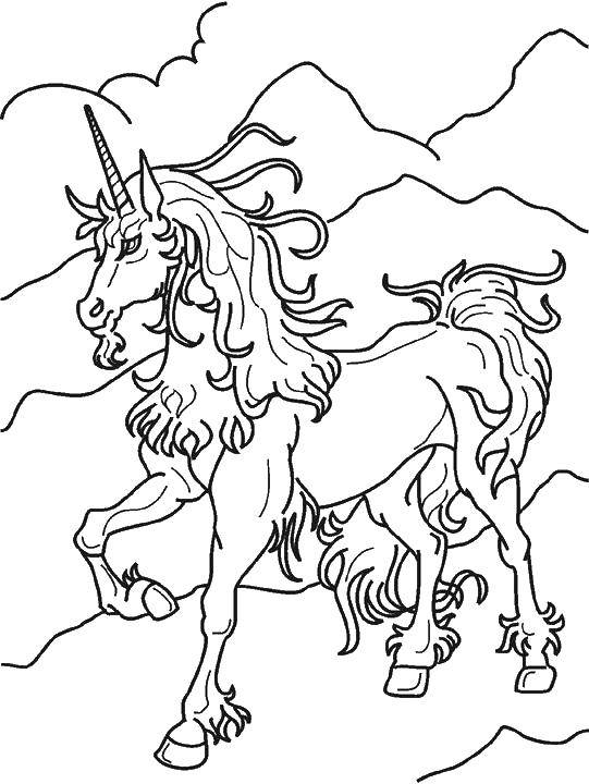 Раскраска Старый единорог Скачать единорог, лошадка.  Распечатать ,единороги,