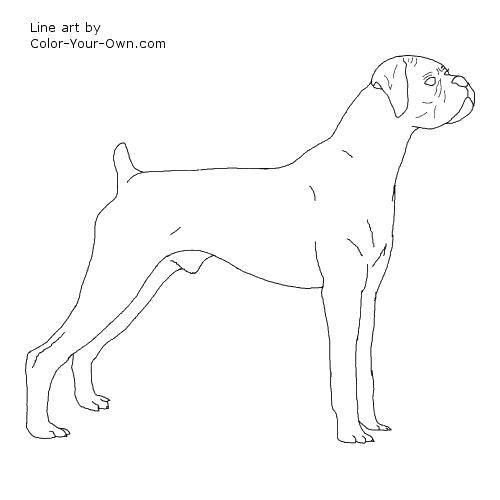 Раскраска Высокий пёс. Скачать Животные, собака.  Распечатать ,Животные,