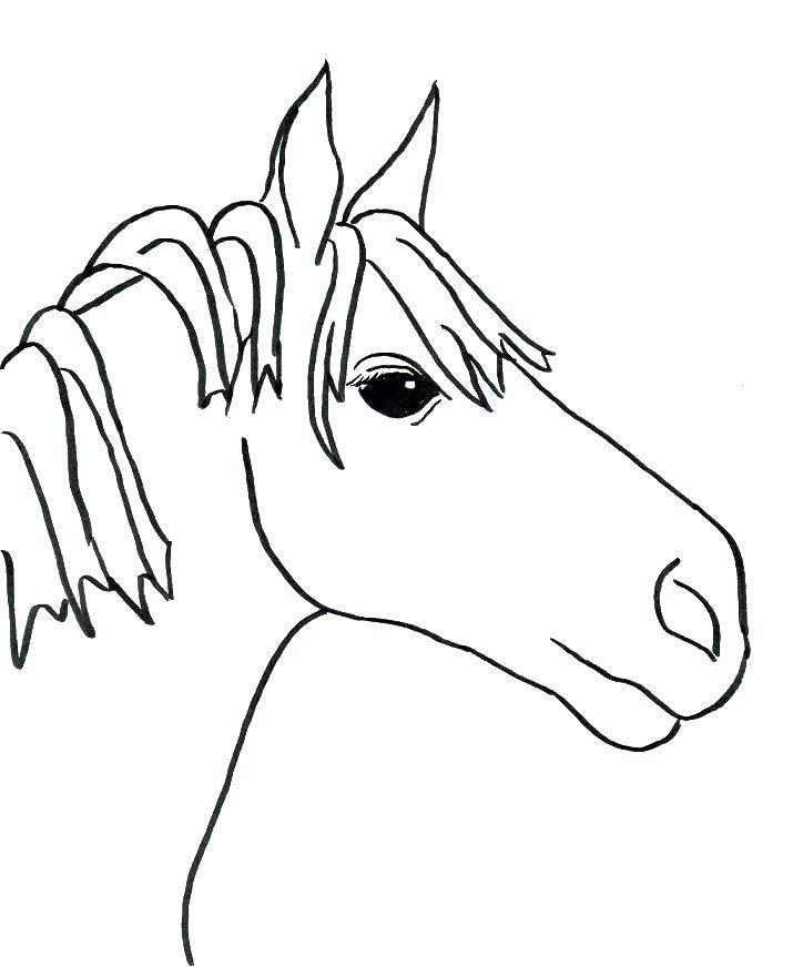 Раскраска Голова коня Скачать лошади, кони.  Распечатать ,лошади,