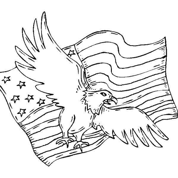 Раскраска Орел и американский флаг Скачать флаг, США, Америка, орел.  Распечатать ,Флаги,