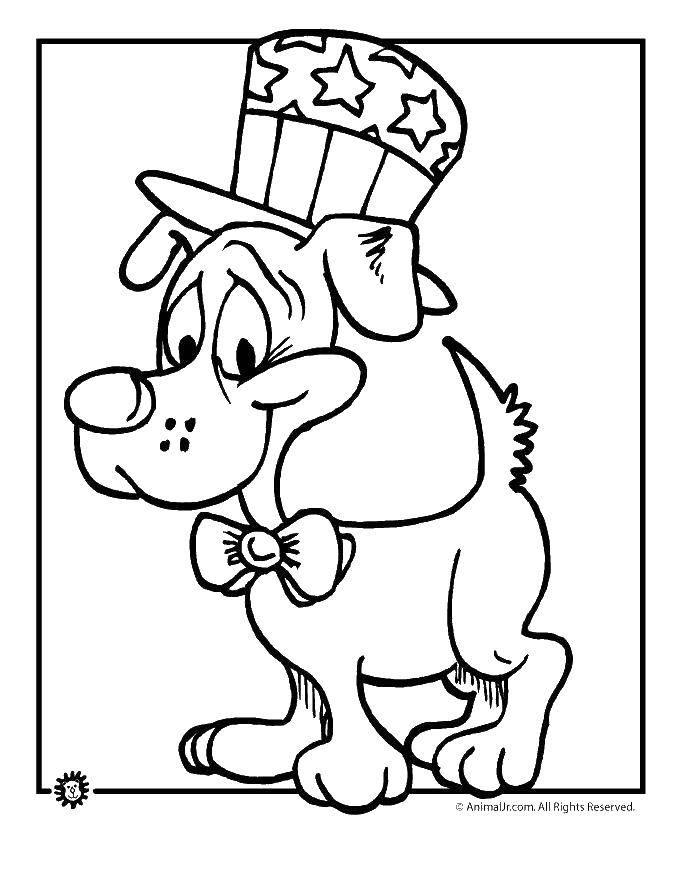 Раскраска Собачка Скачать сша, собачка.  Распечатать ,США,