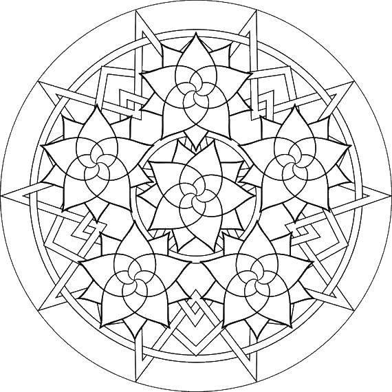 Раскраска Цветы и линии Скачать узоры, узор, цветы.  Распечатать ,узоры,