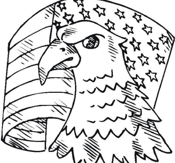 Название: Раскраска Голова орла и флаг. Категория: США. Теги: США, Америка, флаг.