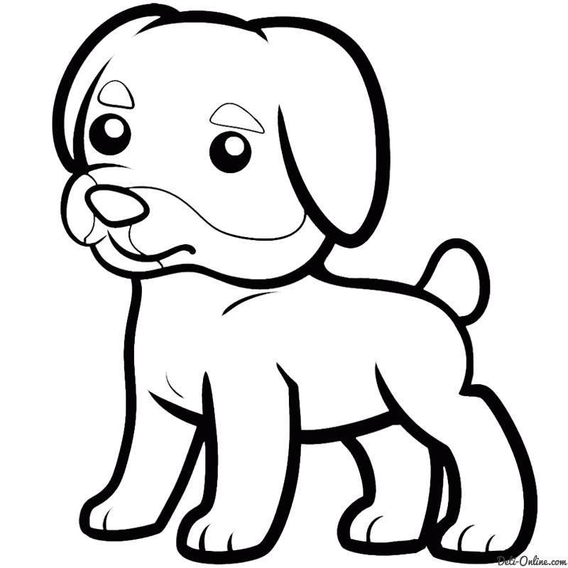 Раскраски собака, poisk.