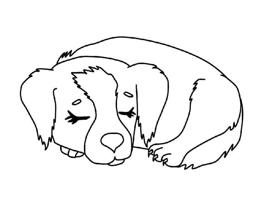 Раскраска Рисунок спящая собака Скачать собака.  Распечатать ,домашние животные,