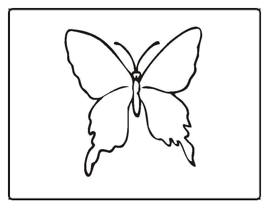 Раскраска бабочка Скачать ,примеры, математика, кошка, номера,.  Распечатать