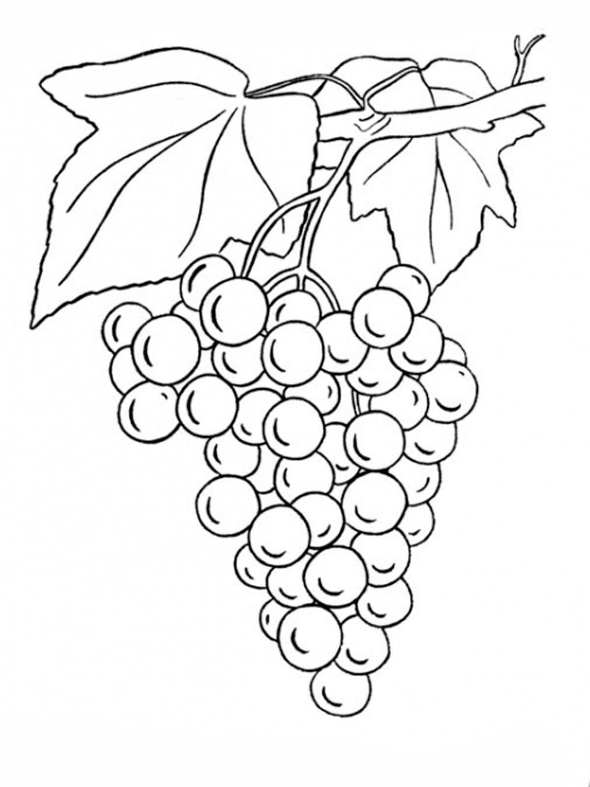 Раскраска ягоды Скачать щенок, мяч.  Распечатать ,домашние животные,