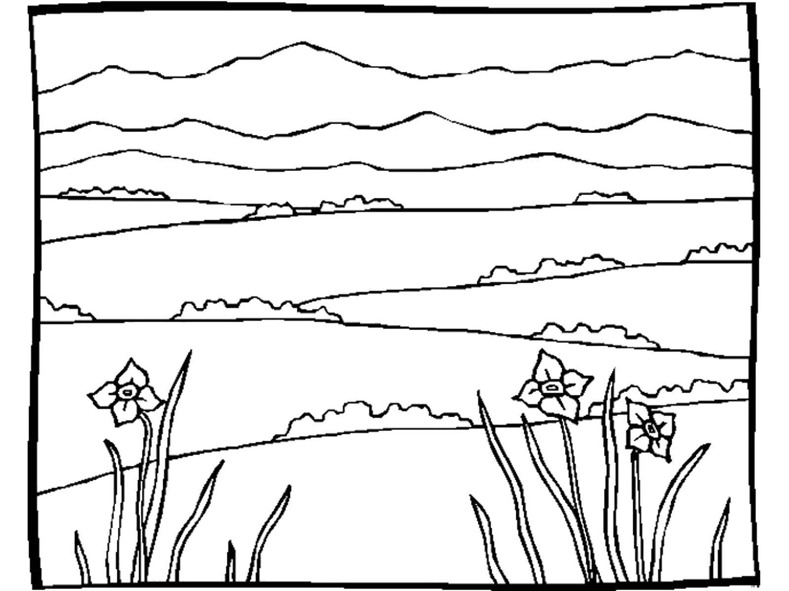 раскраски раскраска горные поляны цветов природа скачать