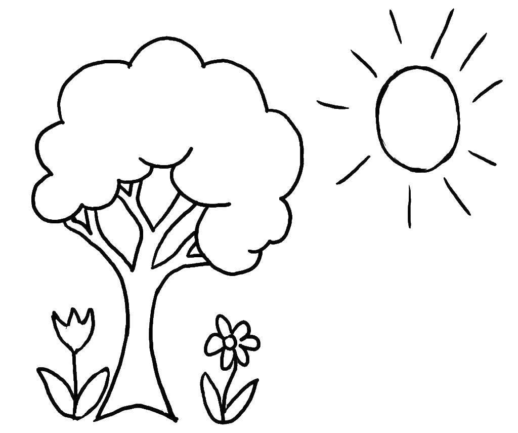 Раскраска На цветы под деревом светит солнце Скачать дерево, цветы, солнце.  Распечатать ,Природа,