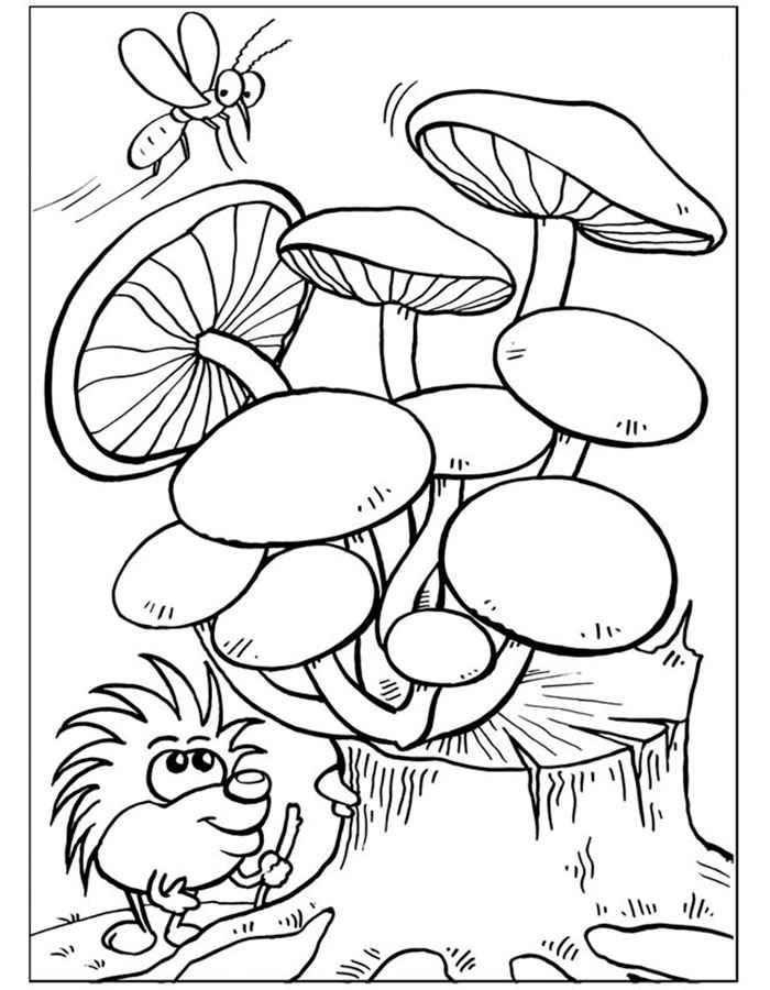 Раскраска грибы Скачать ,гриб,опята,.  Распечатать