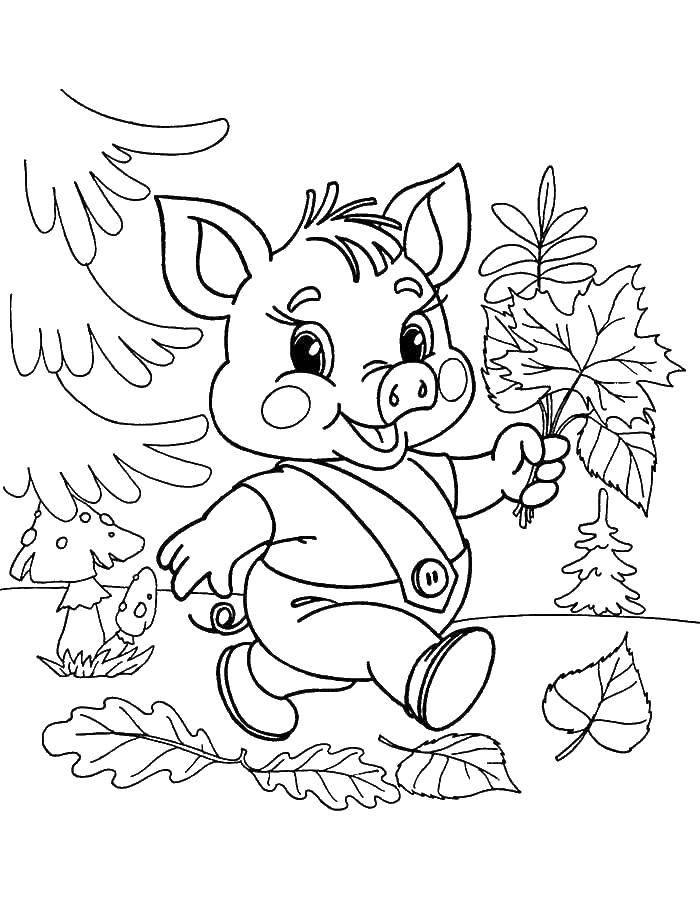 Раскраска Поросенок собирает листья Скачать поросенок, волк.  Распечатать ,Сказки,