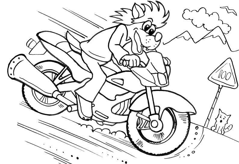 """Раскраска Волк и заяц из ну, погоди! несется на мотоцикле Скачать Персонаж из мультфильма, Волк, """"Ну, Погоди!"""".  Распечатать ,Советские раскраски,"""