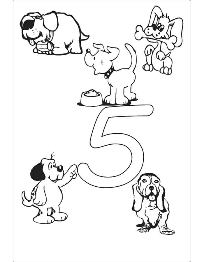 Раскраска Учимся считать вместе со зверьками Скачать Цифры, счёт.  Распечатать ,Цифры,