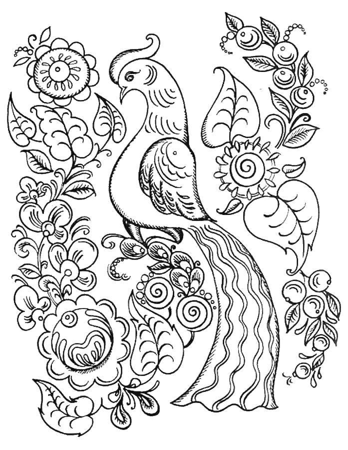 Раскраска Персонажи из сказок Скачать крылья, кошки, кошечка.  Распечатать ,раскраски,