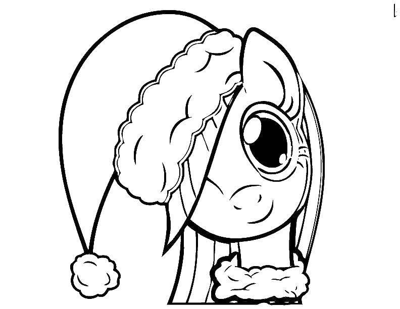 Раскраска Пони в шапке Скачать пони.  Распечатать ,Пони,