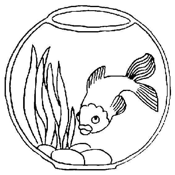 Раскраска рыбы Скачать мальчик, мяч.  Распечатать ,спорт,