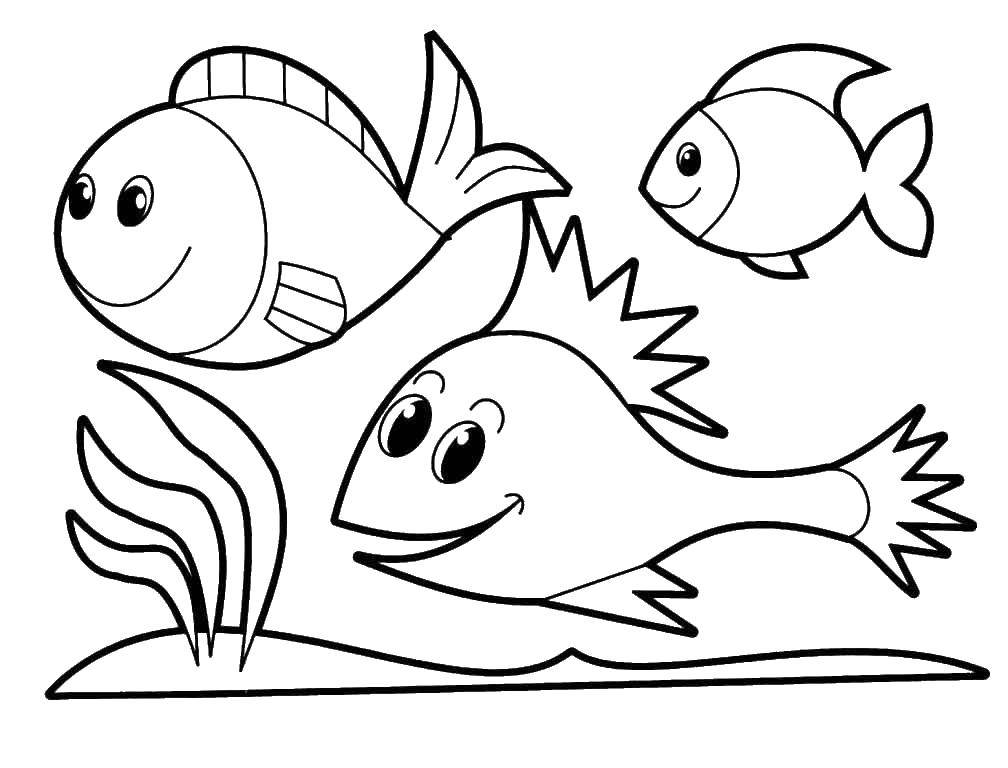 Раскраска рыбы Скачать вор, фоксфингер.  Распечатать ,Персонажи из сказок,