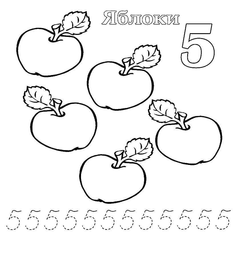 Раскраска Учимся считать, цифра 5 Скачать Цифры, счёт, числа.  Распечатать ,прописи цифры,