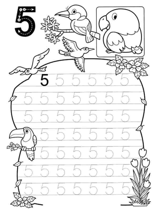 Раскраска Учимся считать , цифра 5 Скачать Цифры, счёт, числа.  Распечатать ,прописи цифры,