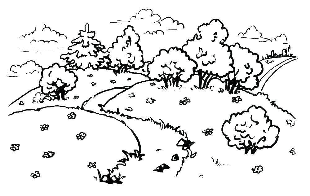 Раскраска Лесная поляна Скачать ,Природа, лес, поляна, цветы,.  Распечатать