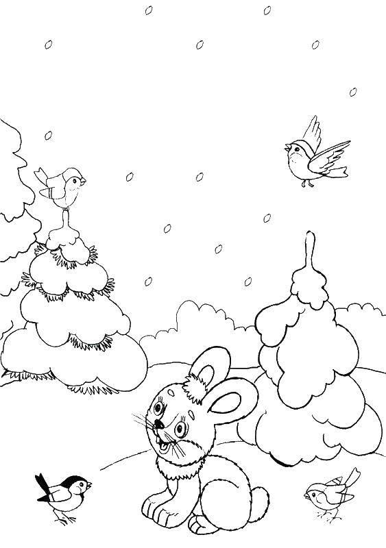 Раскраска Зайчик зимой в лесу Скачать , заяц, кролик, .  Распечатать ,зима,