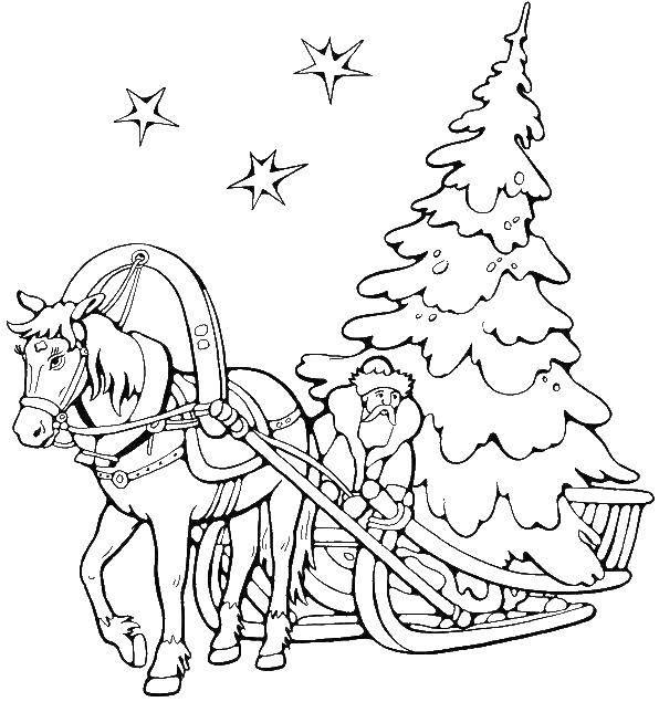 Раскраска Дед мороз везёт ёлку на санях Скачать Новый Год, ёлка, зима, лес, Дед Мороз.  Распечатать ,раскраски елки,