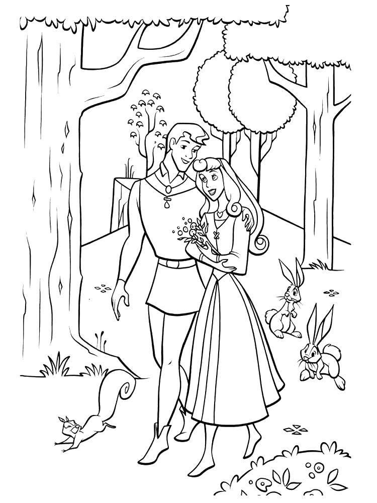 Раскраска Аврора и филлип гуляют по лесу Скачать Дисней, Спящая красавица.  Распечатать ,спящая красавица,