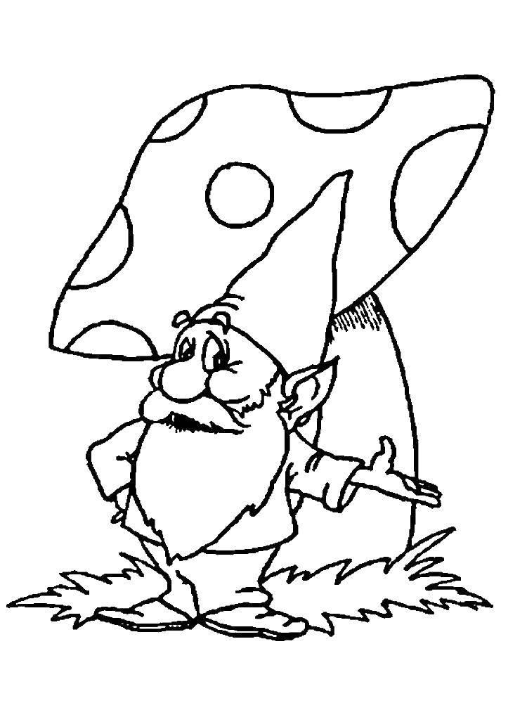 Раскраска Гном и мухомор Скачать Гном, гриб.  Распечатать ,гномы,