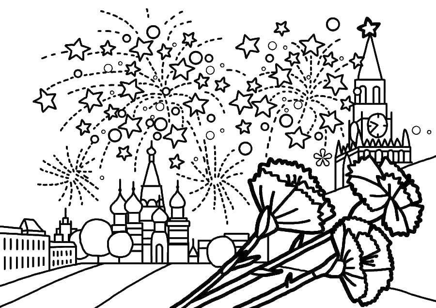 Раскраска Гвоздики ко дню победы Скачать ,Поздравление, 9 мая, День Победы,.  Распечатать