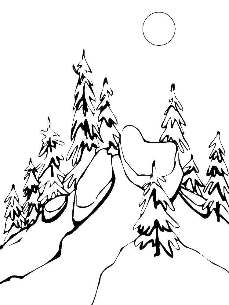 Раскраска Лес зимой Скачать лес, зима.  Распечатать ,зима,