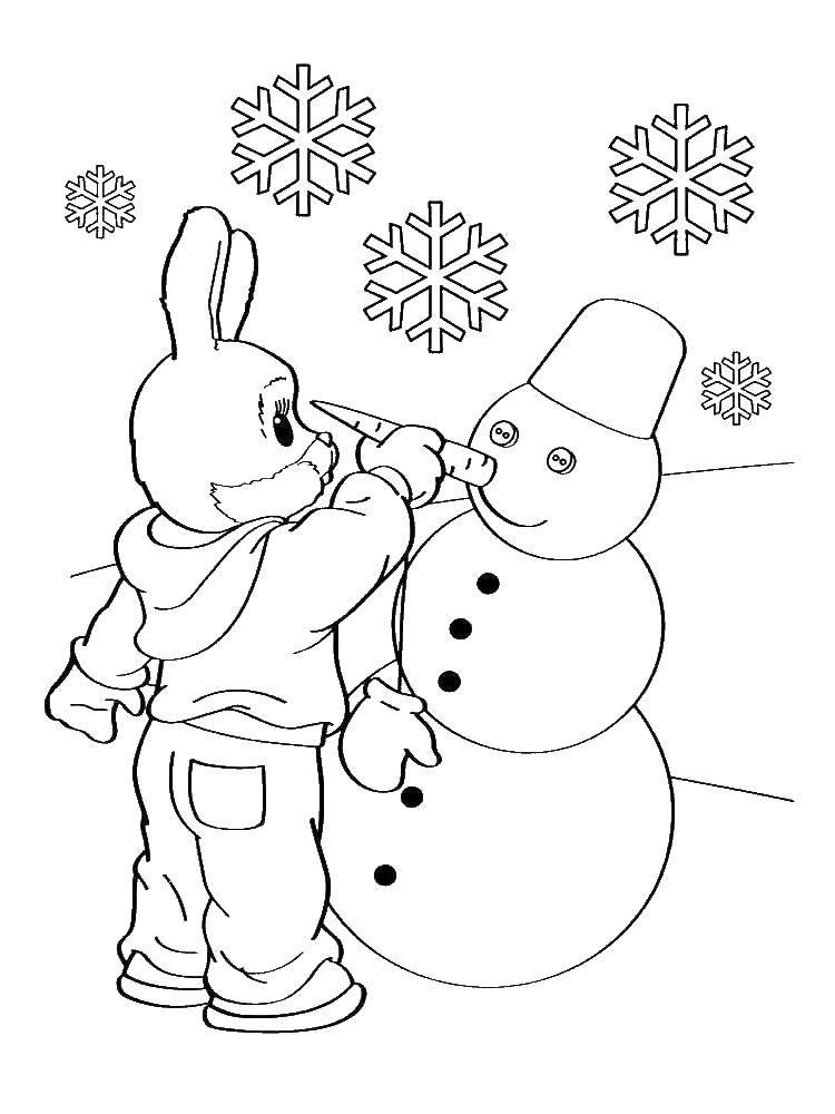 Раскраска зима Скачать принцессы, лес, Дисней, Диснеевские мультфильмы.  Распечатать ,Принцессы,