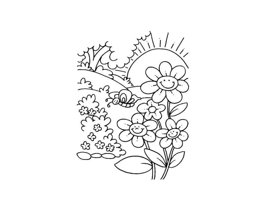 Раскраска весна Скачать ,король лев, лев, мультфильмы,.  Распечатать