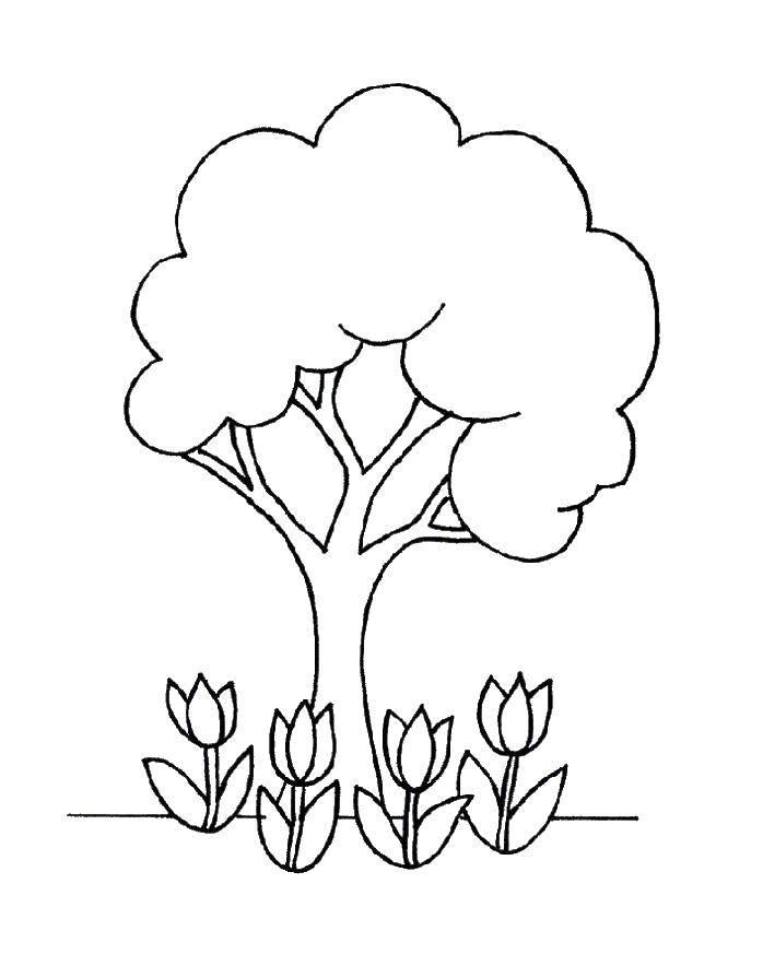 Раскраска Дерево с цветами Скачать ,дерево,цветы,.  Распечатать