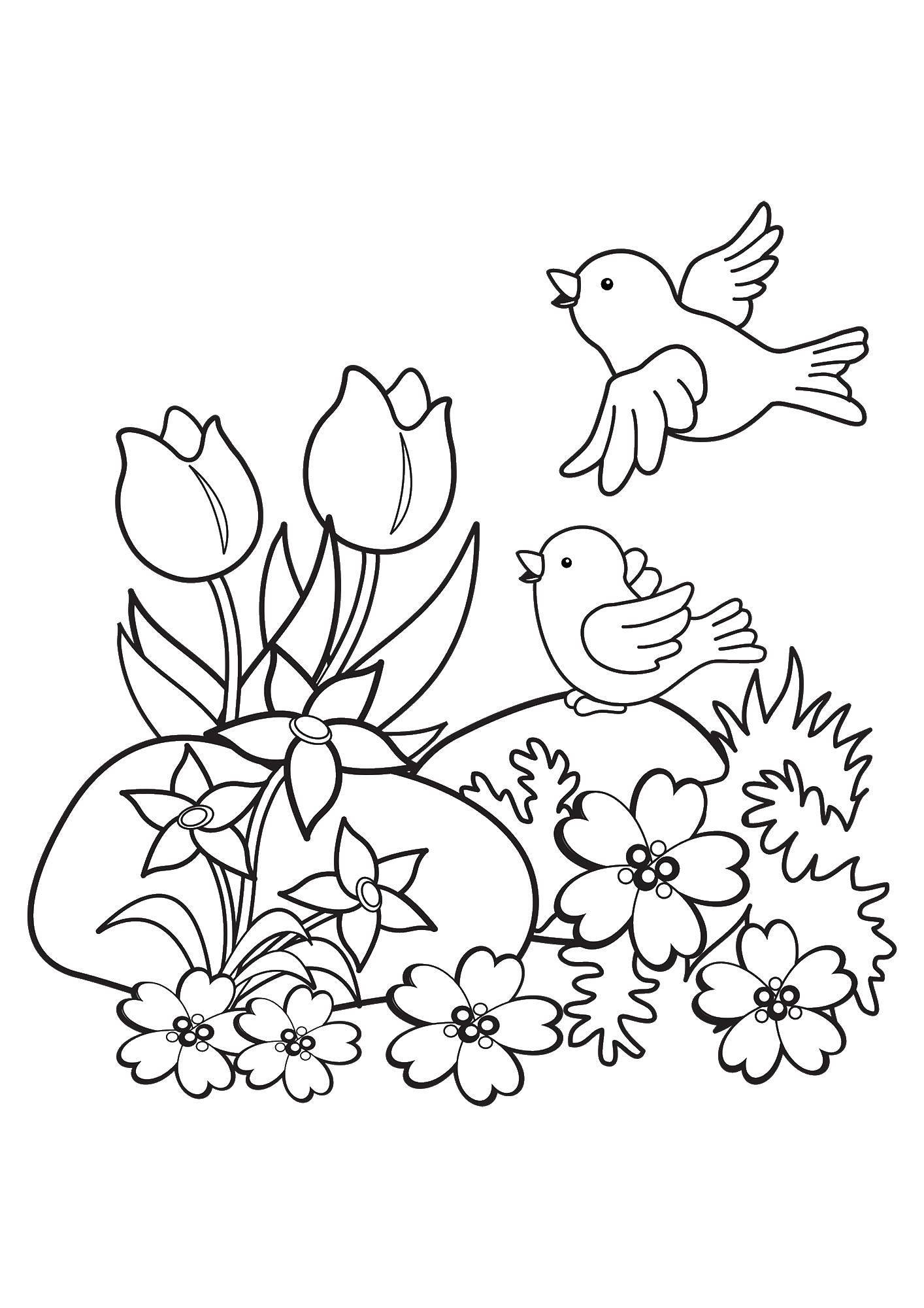Раскраска Птицы на поляне с цветами Скачать цветы, птицы.  Распечатать ,Животные,