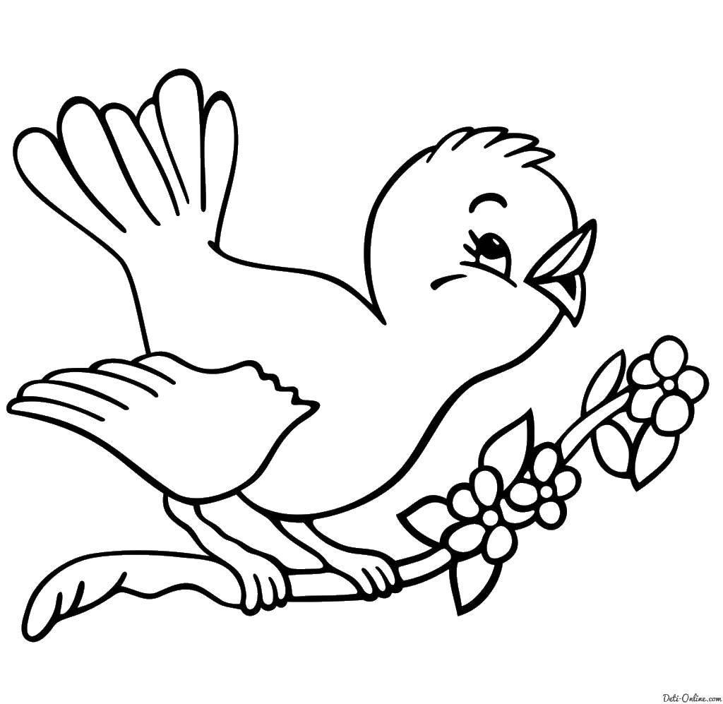 Раскраска весна Скачать ,птицы,.  Распечатать