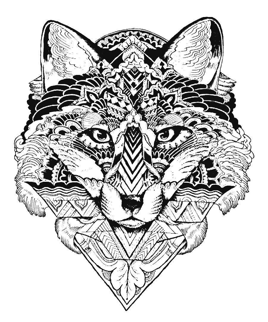 Раскраски животных, Раскраска Киска детеныши животных.
