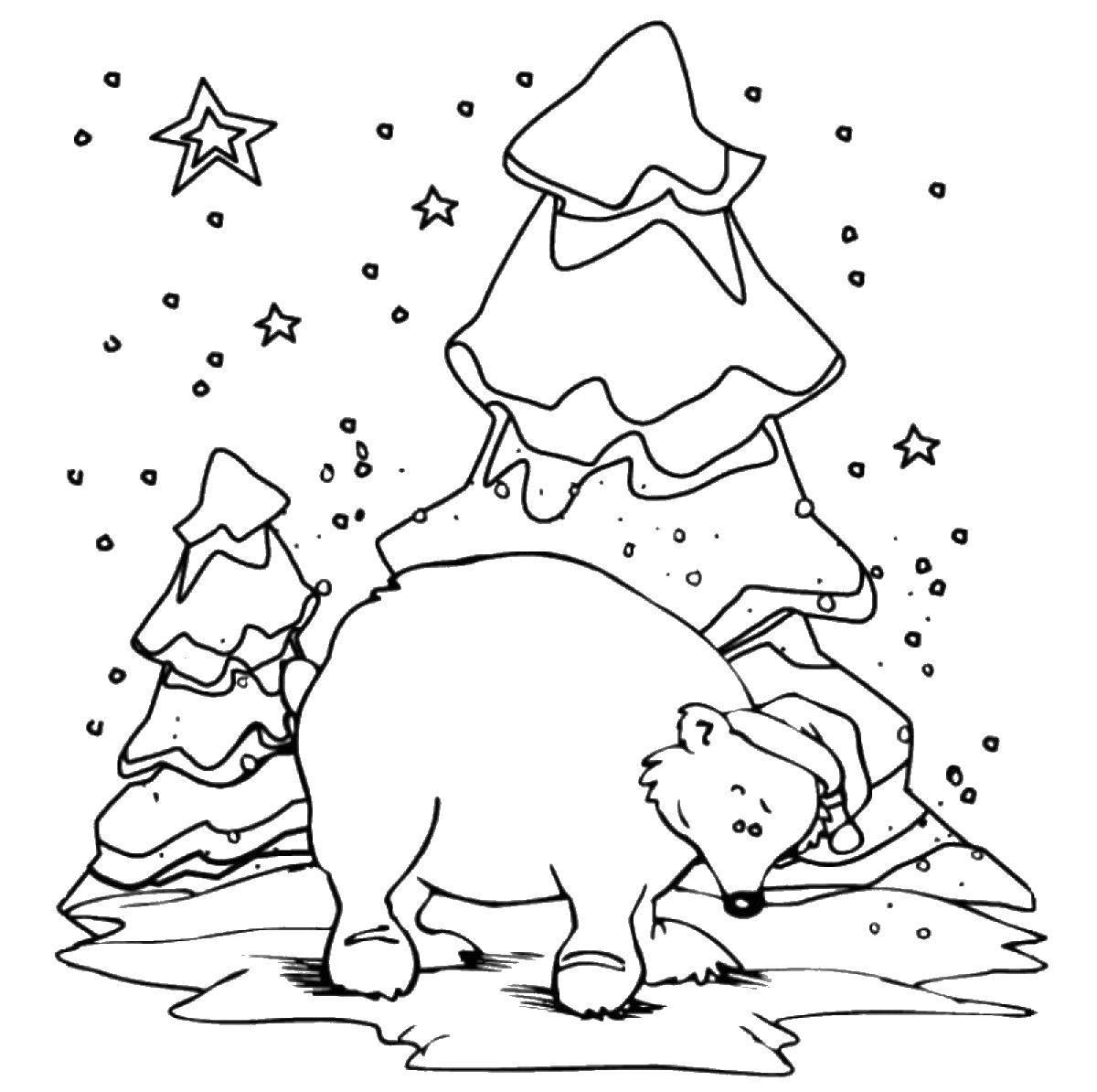 Раскраска Мишка зимой перед елкой Скачать мишка.  Распечатать ,Животные,